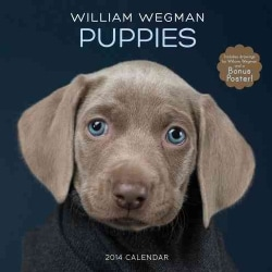 William Wegman Puppies 2014 Calendar