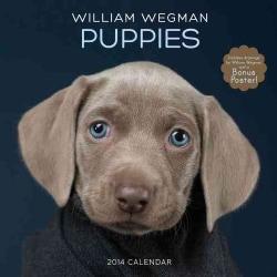 William Wegman Puppies 2014 Calendar
