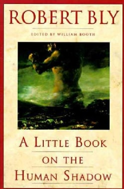 A Little Book on the Human Shadow (Paperback)