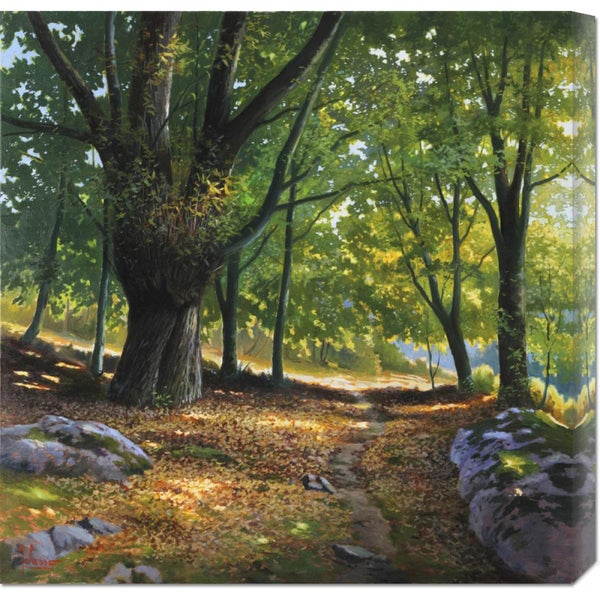 Adriano Galasso 'Luce nel bosco' Stretched Canvas