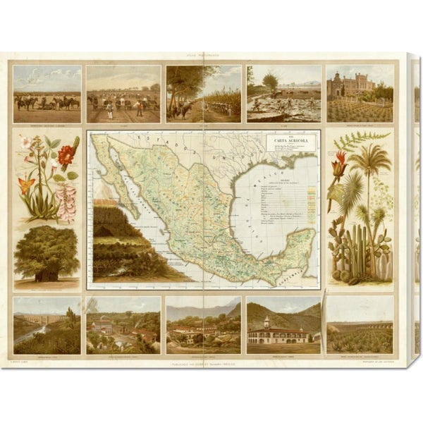 Antonio Garcia Cubas 'Carta Agricola, 1885' Stretched Canvas Art