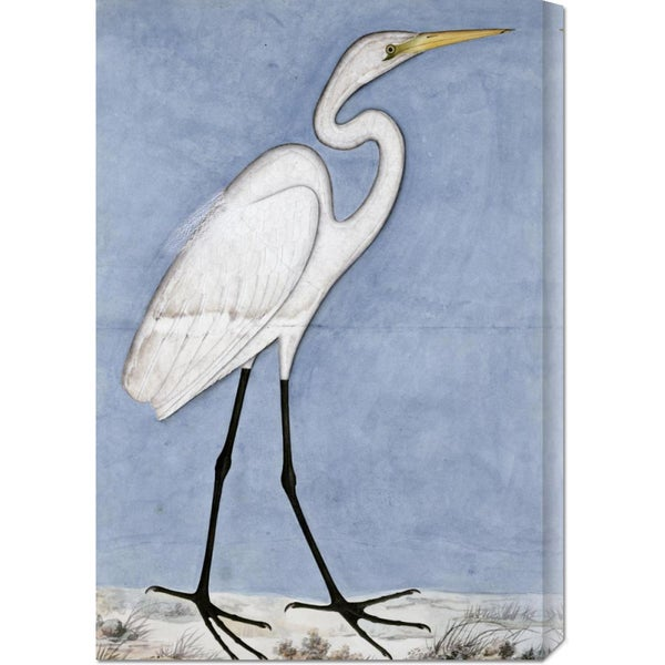 Lucknow School 'Great Egret' Stretched Canvas Art