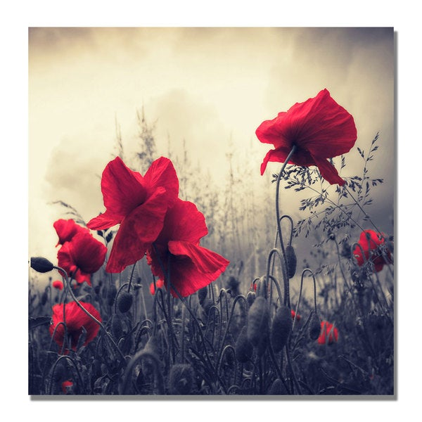 Philippe Sainte-Laudy 'Red For Love' Canvas Art