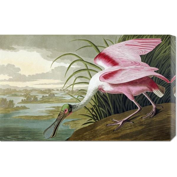 John James Audubon 'Roseate Spoonbill' Stretched Canvas Art