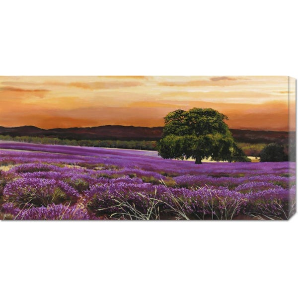 Valerio Sella 'Campo di lavanda' Stretched Canvas Art