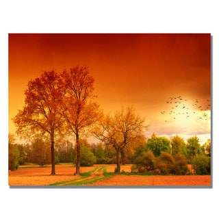 Philippe Sainte-Laudy 'Orange World' Canvas Art
