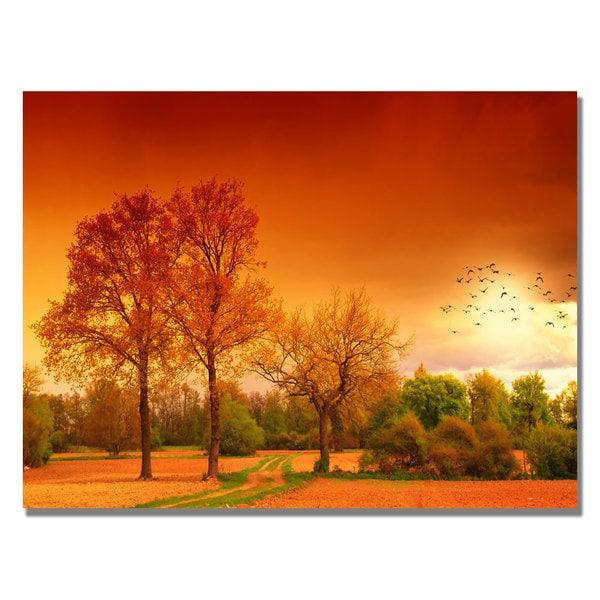 Philippe Sainte-Laudy 'Orange World' Canvas Art