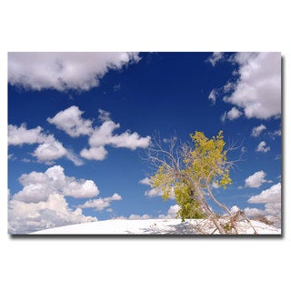 Philippe Sainte Laudy 'Clouds and Loneliness' Canvas Art