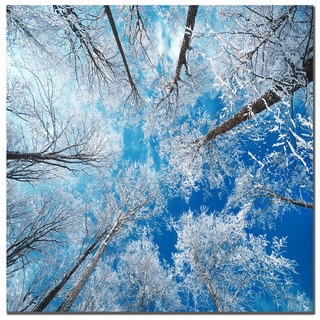 Philippe Sainte-Laudy 'Frozen Sky' Canvas Art
