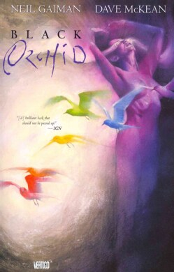 Black Orchid (Paperback)