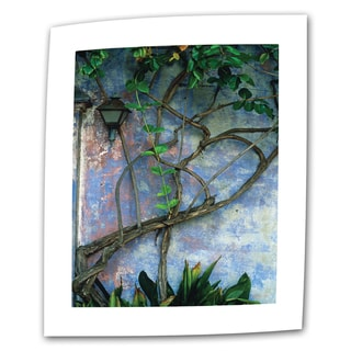 Kathy Yates 'Vine and Wall' Traditional Canvas Art