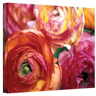 Kathy Yates 'Ranunculus Close-up' Canvas Art