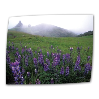 Kathy Yates 'Figueroa Mountain with Fog' Wrapped Canvas Art