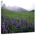 Kathy Yates 'Figueroa Mountain with Fog' Canvas Art