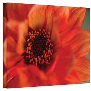Kathy Yates 'Fiery Dahlia' Canvas Art