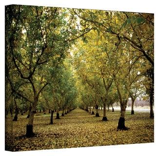 Kathy Yates 'Fall Orchard' Canvas Art