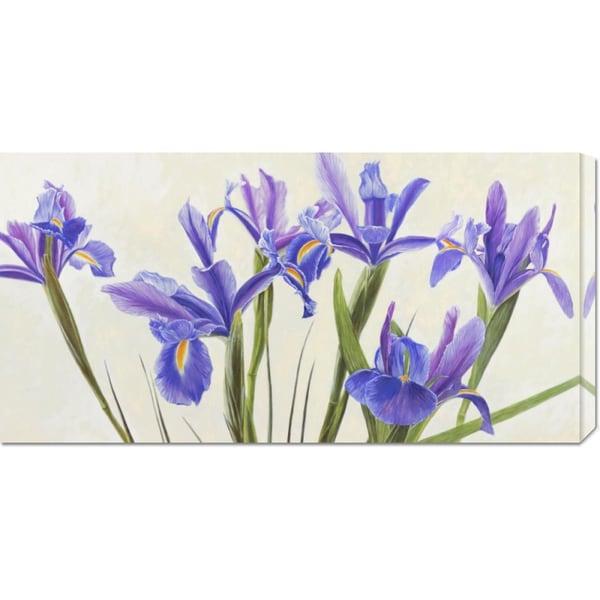 Big Canvas Co. Elena Dolci 'Iris' Stretched Canvas Art
