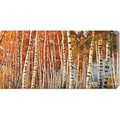 Adriano Galasso 'Betulle d'autunno' Stretched Canvas Art