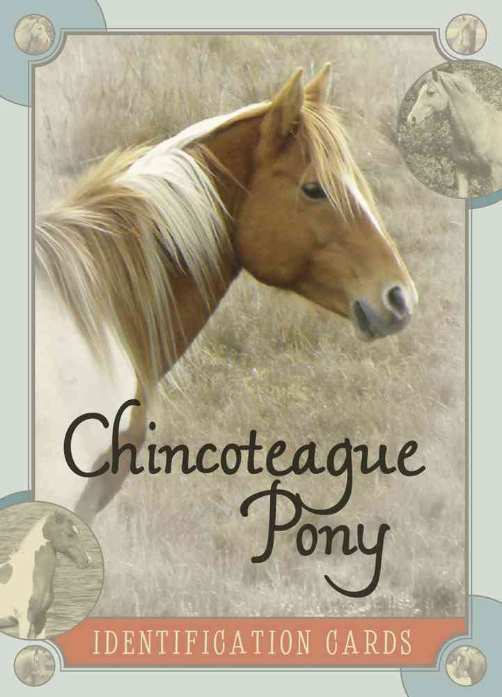 Chincoteague Pony Identification Cards (Cards)