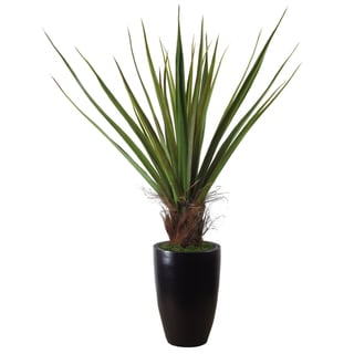 Laura Ashley Silk Agave Plant with Planter