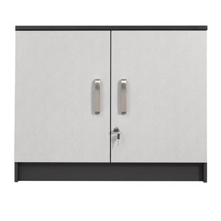Talon Garage Charcoal Stipple 2-door Wall Cabinet