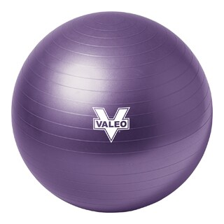 Valeo Burst Resistant Ball (55cm)