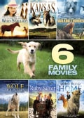 6 Movie Family Pack: Vol. 3 (DVD)