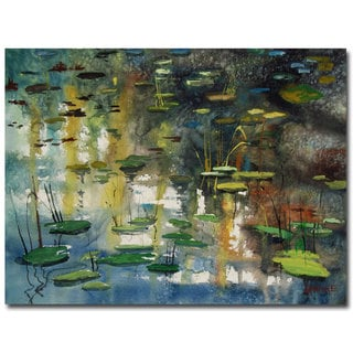 Ryan Radke 'Faces in the Pond' Canvas Art