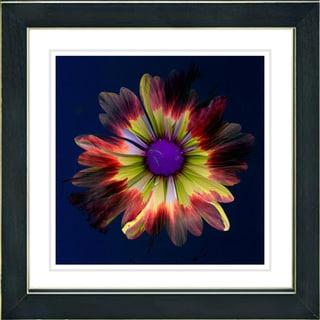Studio Works Modern 'Fire Flower - Red' Framed Print