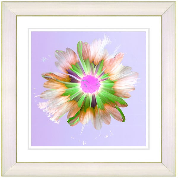 Studio Works Modern 'Snowflake Daisy - Lilac' Framed Print
