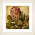 Studio Works Modern 'Vintage Antique Botanical #57' Framed Print