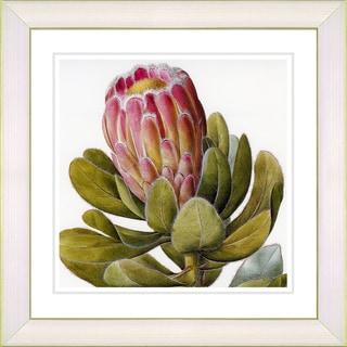 Studio Works Modern 'Vintage White Botanical #57' Framed Print