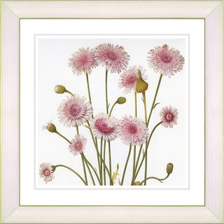 Studio Works Modern 'Vintage Botanical #39' Framed Print