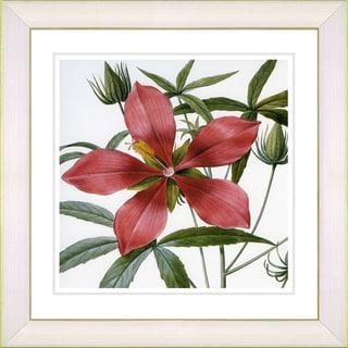 Studio Works Modern 'Vintage Botanical #22' Framed Print