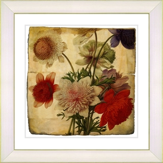 Studio Works Modern 'Vintage Botanical No. 20a' Framed Print