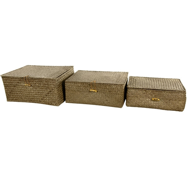 Set of 3 Hand-Woven Covered Storage Bins (China)
