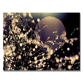 Beata Czyzowska 'Moonrise in Fairyland' Canvas Art