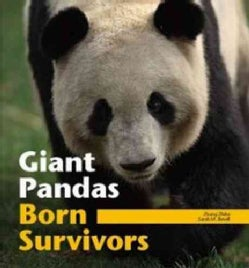 Giant Pandas: Born Survivors (Paperback)