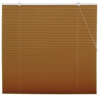 Coffee Pleated Shades (China)