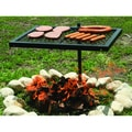Texsport Heavy Duty Swivel Grill
