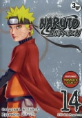 Naruto Shippuden Box Set 14 (DVD)