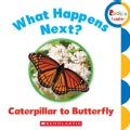 What Happens Next? Caterpillar to Butterfly (Board book)