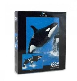 Killer Whales: 500 Pieces (General merchandise)