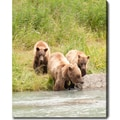'Family - Wild Bears of Alaska' Canvas Art