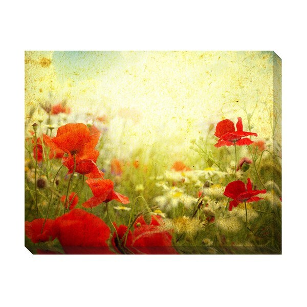 Gallery Direct Vintage Poppies Oversized Gallery Wrapped Canvas