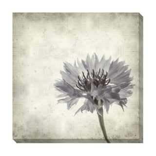 Floral I Oversized Gallery Wrapped Canvas