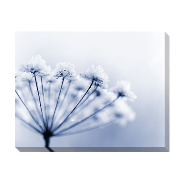 Frozen Flower Oversized Gallery Wrapped Canvas
