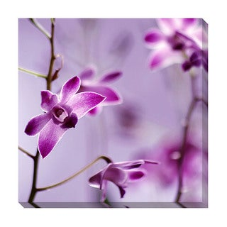 Orchid Oversized Gallery Wrapped Canvas