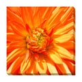 Burning Desire Oversized Gallery Wrapped Canvas