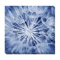 Dandelion Oversized Gallery Wrapped Canvas
